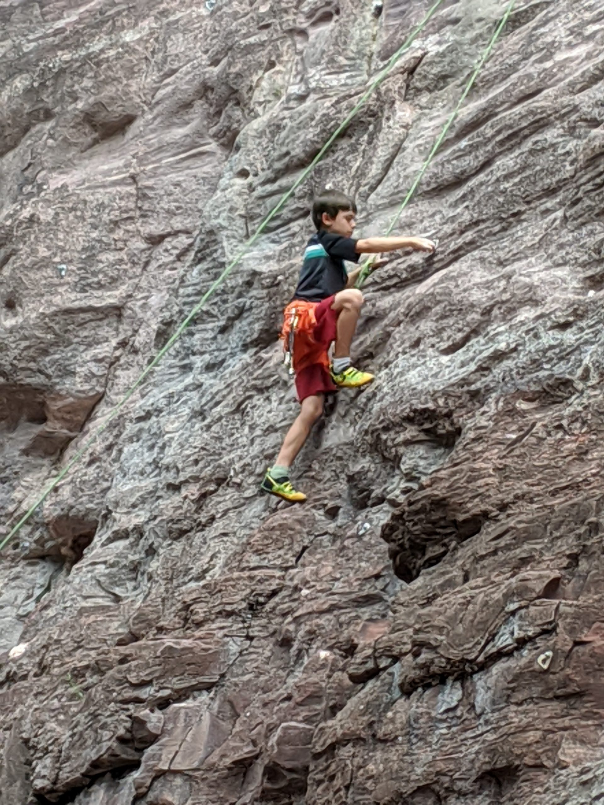 sclimbing-scaled